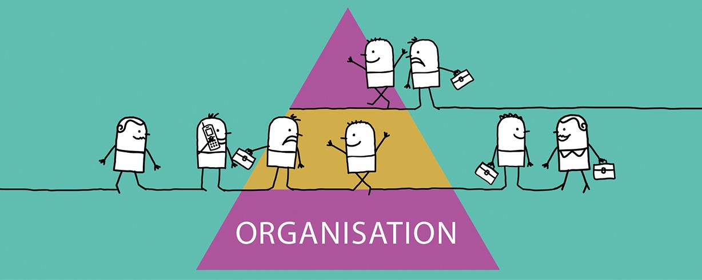 Nye videoer støtter arbejdet med organisationsteori